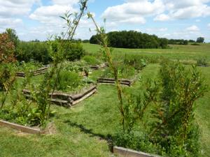 jardin_de_simples_gites_ecologiques_de_baugnac